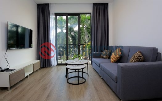 Beautiful service apartment 2 bedrooms in Tu Hoa to rent