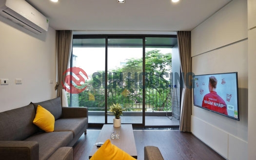 Good design 1 bedroom apartment for rent in the heart of Tay Ho